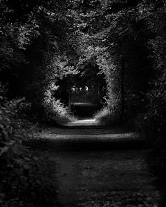 Lambourn-Way