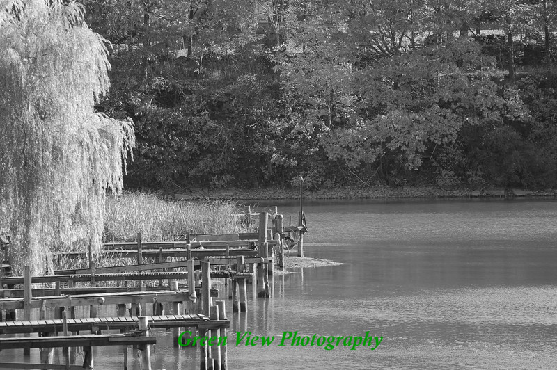 Docks on the Genesee