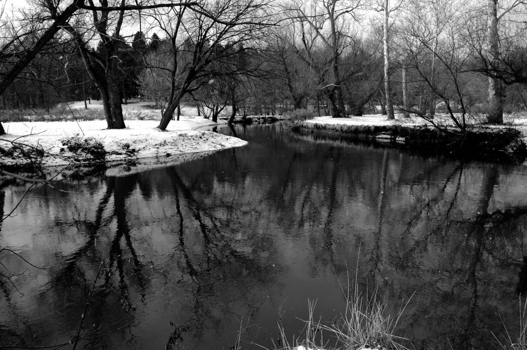 Ellison Park - Irondequoit Creek