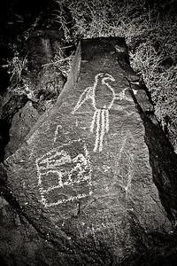 Bird - Boca Negra Canyon trail Rio Grande Style Petroglyph Petroglyph National Monument, New Mexico
