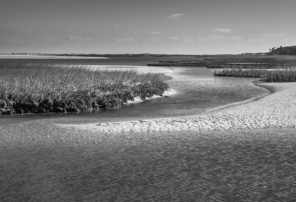 Tidal marsh at low tide on a windy day, Big Talbot Island