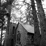 Shrine of St. Therese in trees