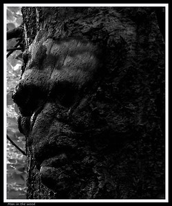 Man in the Wood Edinburgh Scotland