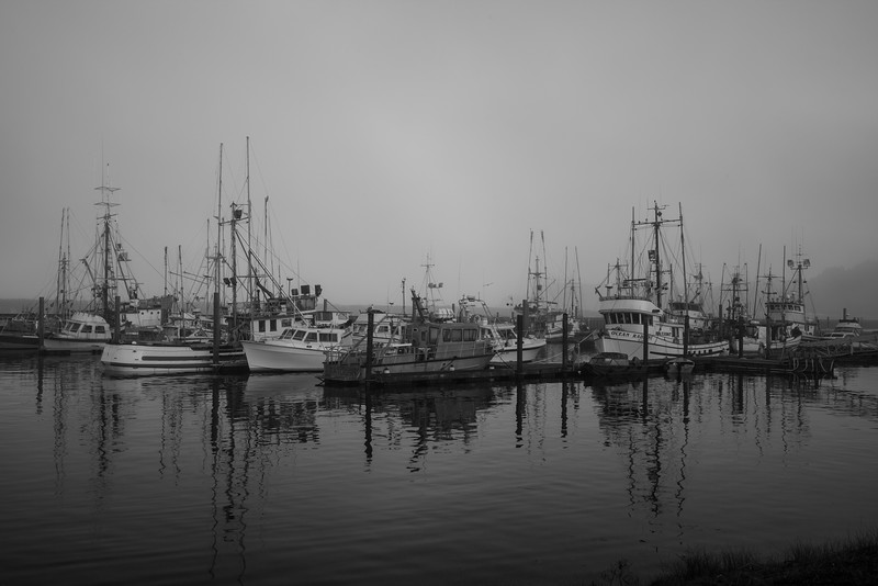Harbor, Washington State
