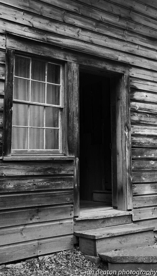 Aged Wood/B&W