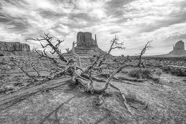 Deadwood Monument Valley