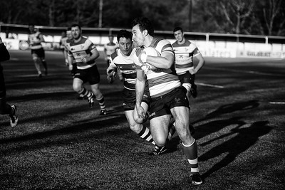 Mike Terelak, Dorking RFC