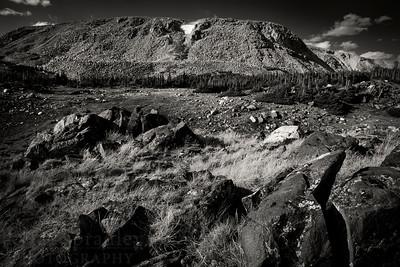 Monochrome Browns Peak
