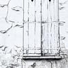 Forgotten Door
