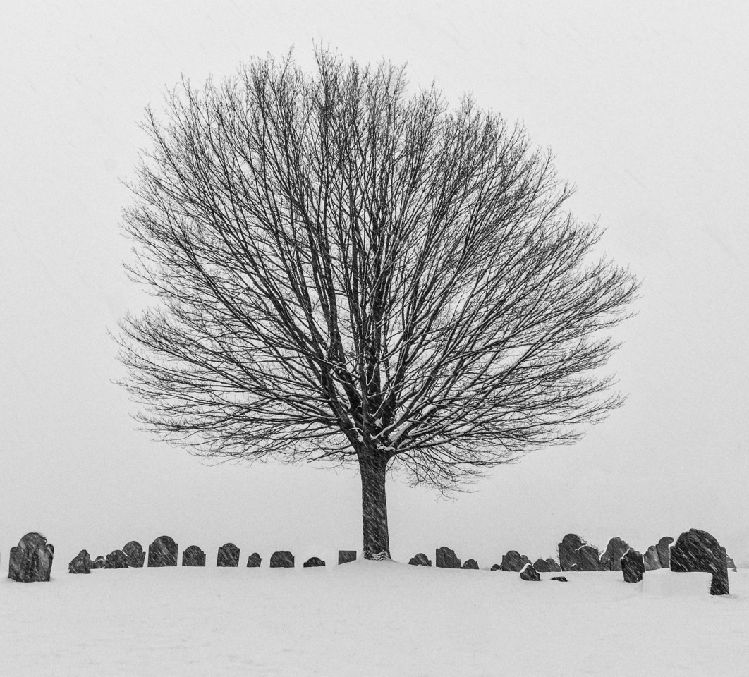 Newburyport cemetary in the snow