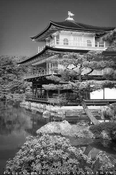 Kinkaku-ji (#0596)