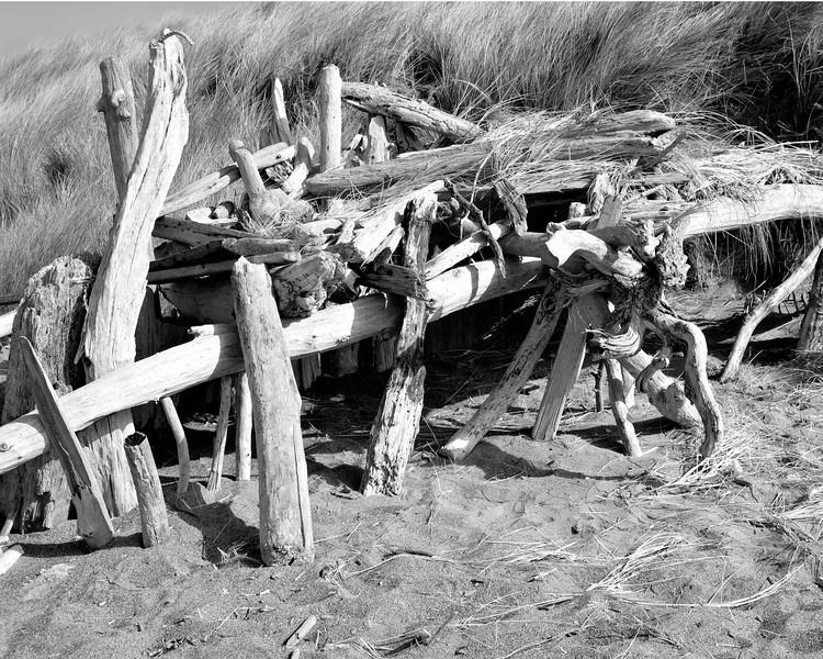 Driftwood Shelter, Bodega Dunes