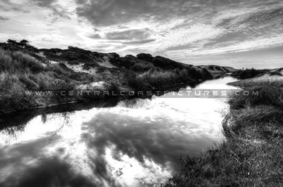 grover-reflection_7333-bw