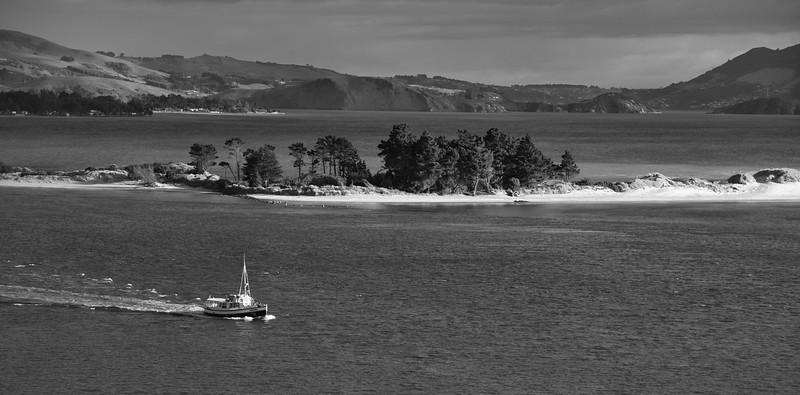 Otago Cruise