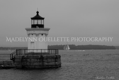 A Foggy Day at Bug Light