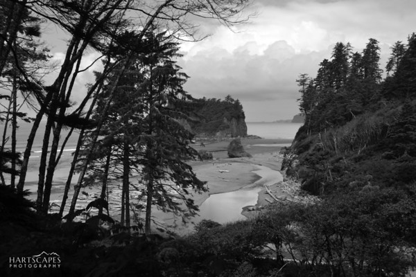 Ruby Beach Black & White