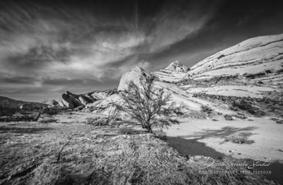 Mormon Rocks Trail - Riverbed II.