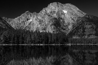 Leigh Lake during early fall season in Grand Teton National Park. The Teton Range is reflected into the clear, mountain lake on a clear, blue sky and sunny day.  © Kyle Spradley Photography | www.kspradleyphoto.com