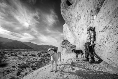 Mormon Rocks Trail - The View