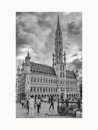 Gothic Building in Brussels