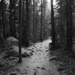 Ouzel Falls trail