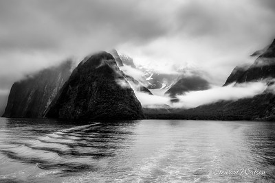 Milford Sound still beautiful in the pouring rain