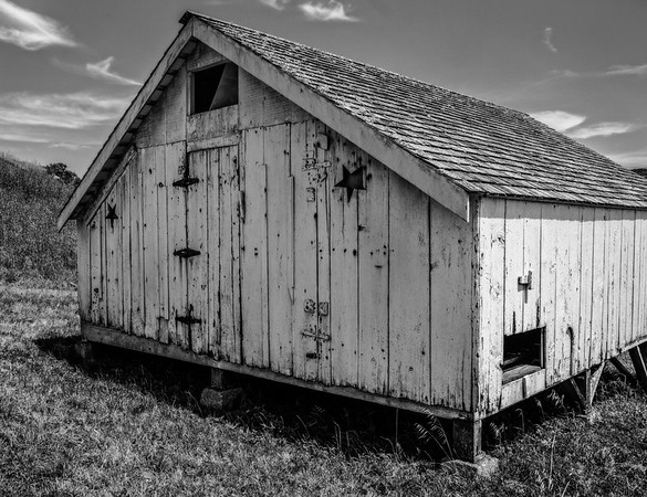 Old Barn, Pt. Reyes
