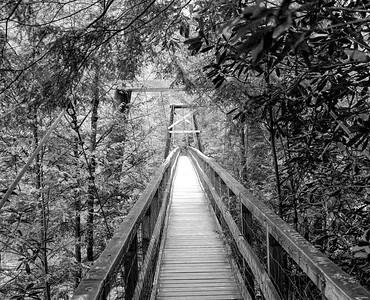 Swinging Bridge in BW