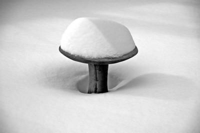 Snowy Bath