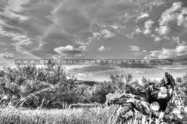 ca-valley_6106-bw