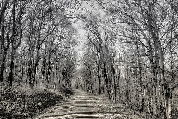 Cohutta Road