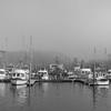 Harbor, Washington State