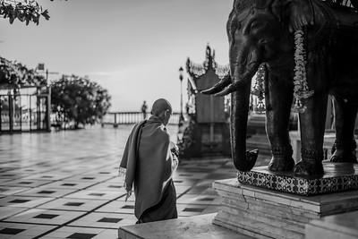 Buddhist Monk at Wat Doi Suthep