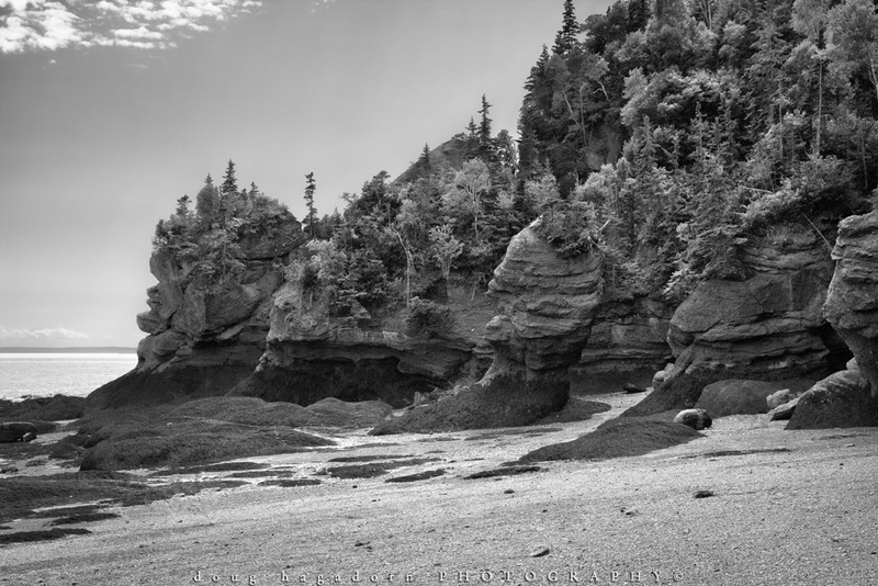 The Rocks of Fundy (#0387)