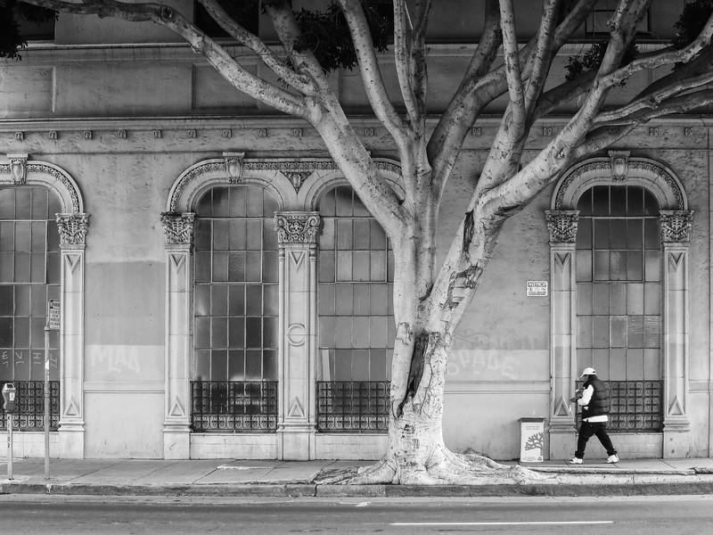 Street in Oakland