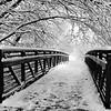 HIdden Hollow Bridge 4x6 copy