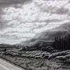 """Rocky Mountain Highway"" (charcoal) by Luke Engle"