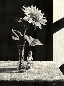 """Evening Light"" (scratchboard) by David Griffin"