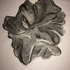 """""""Scallop' (charcoal) by Anne Bewley"""