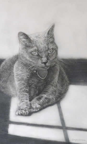 """""""Just Chillin'"""" (colored pencil) by Caryn Coville"""