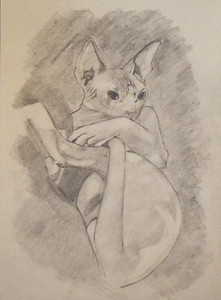 """Got Your Tail"" (graphite) by Kayla Gaudet"