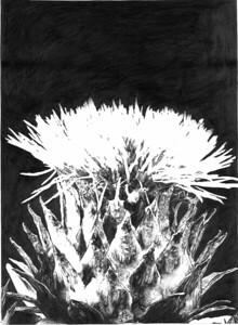 """""""Bakuhatsu"""" (graphite) by Tamara Gataullina"""