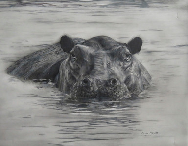 """Afternoon Dip"" (colored pencil) by Caryn Coville"