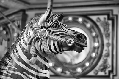 Zebra Carousel