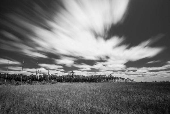 Summer Marsh Long Exposure