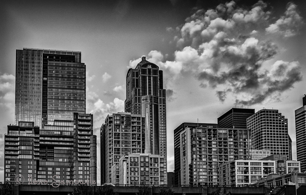 8-27-13 Downtown Seattle from Pier 57