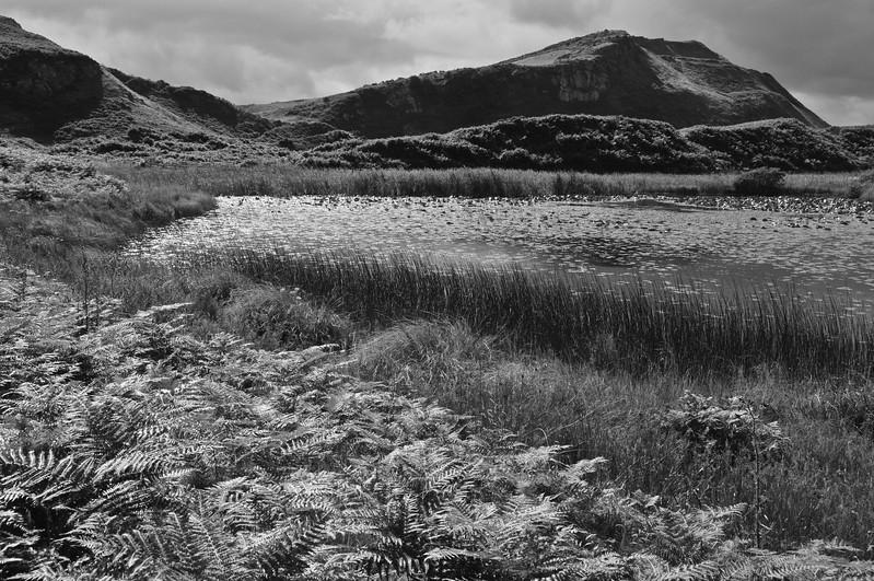 Isle of Bute, 2014.