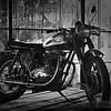 BSA Bike at the Greenhouse Moto Cafe' 4-5-16