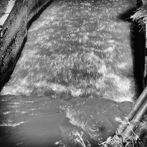 AlyciaC Elements Water