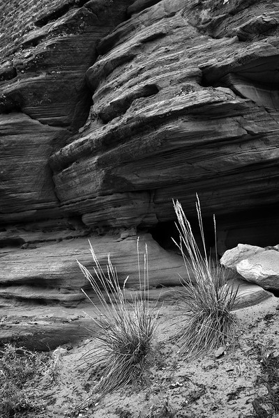 wall Detail #2, Peekaboo Canyon, Utah